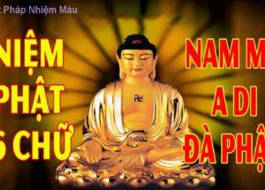 Chia sẻ kinh nghiệm tìm hiểu và tu tập về Phật pháp cơ bản
